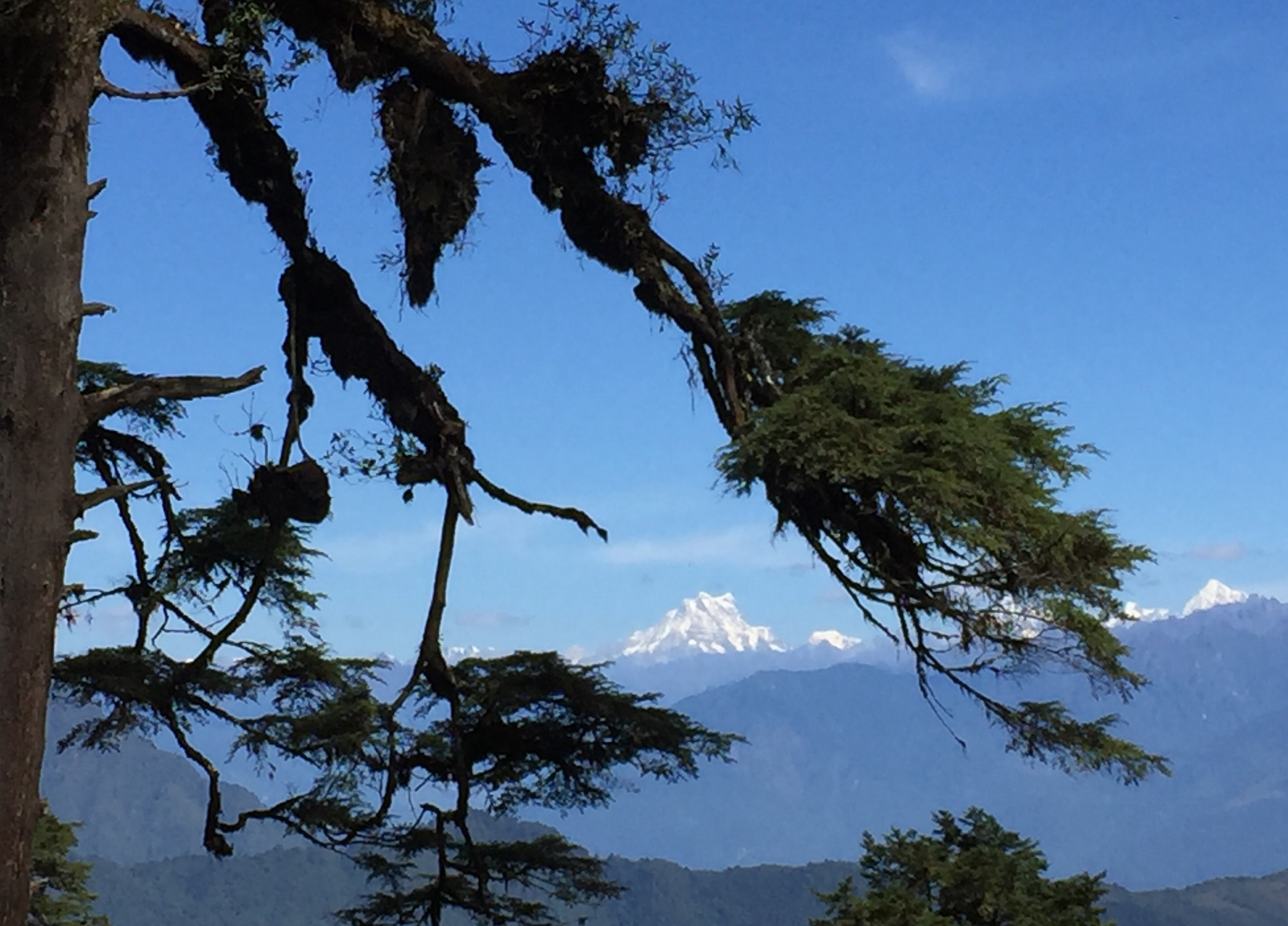 View of the highest unclimbed peak in the world in the Himalayan range, northern border of Bhutan.