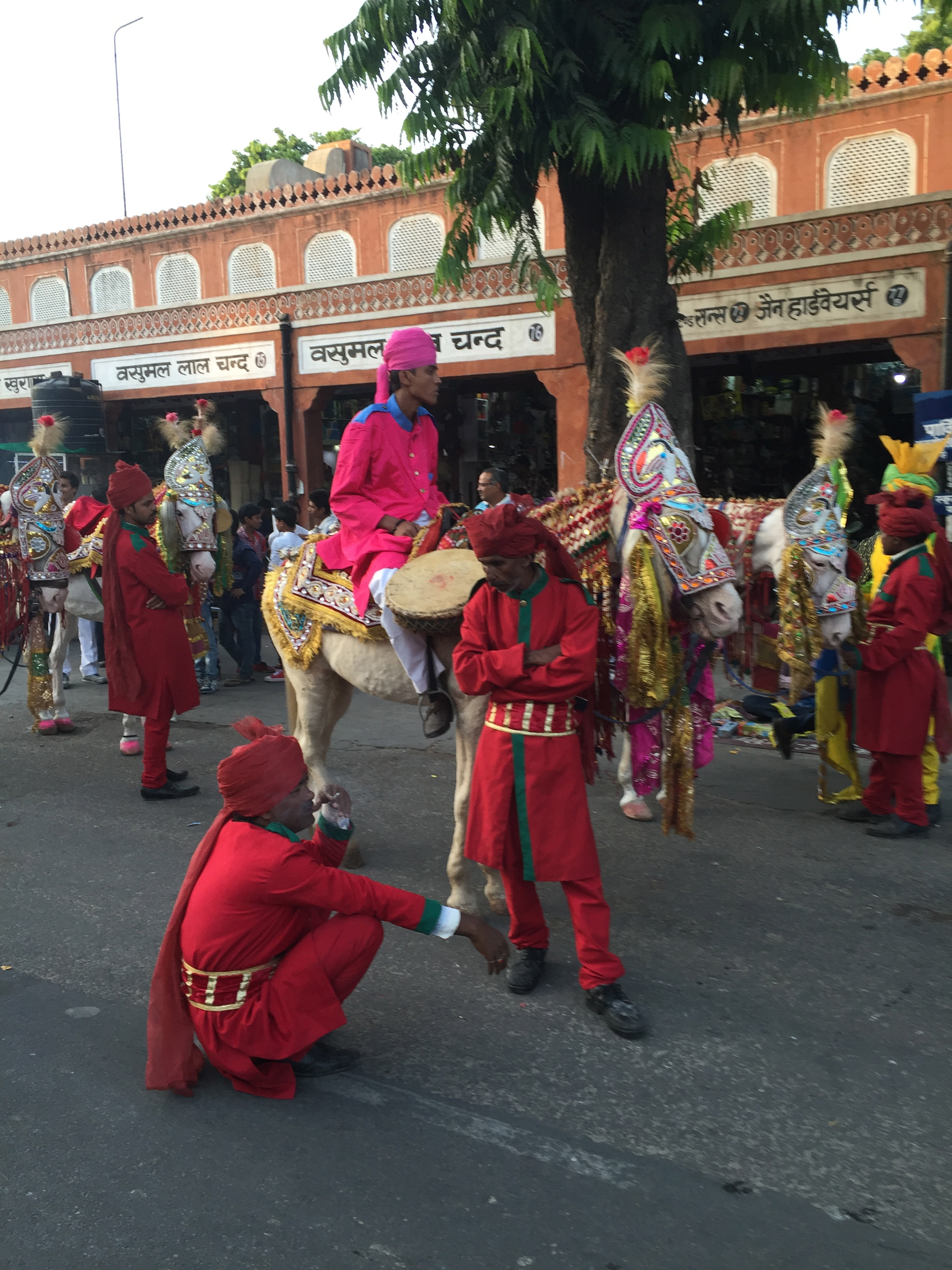 A parade I observed and then briefly joined in Jaipur.