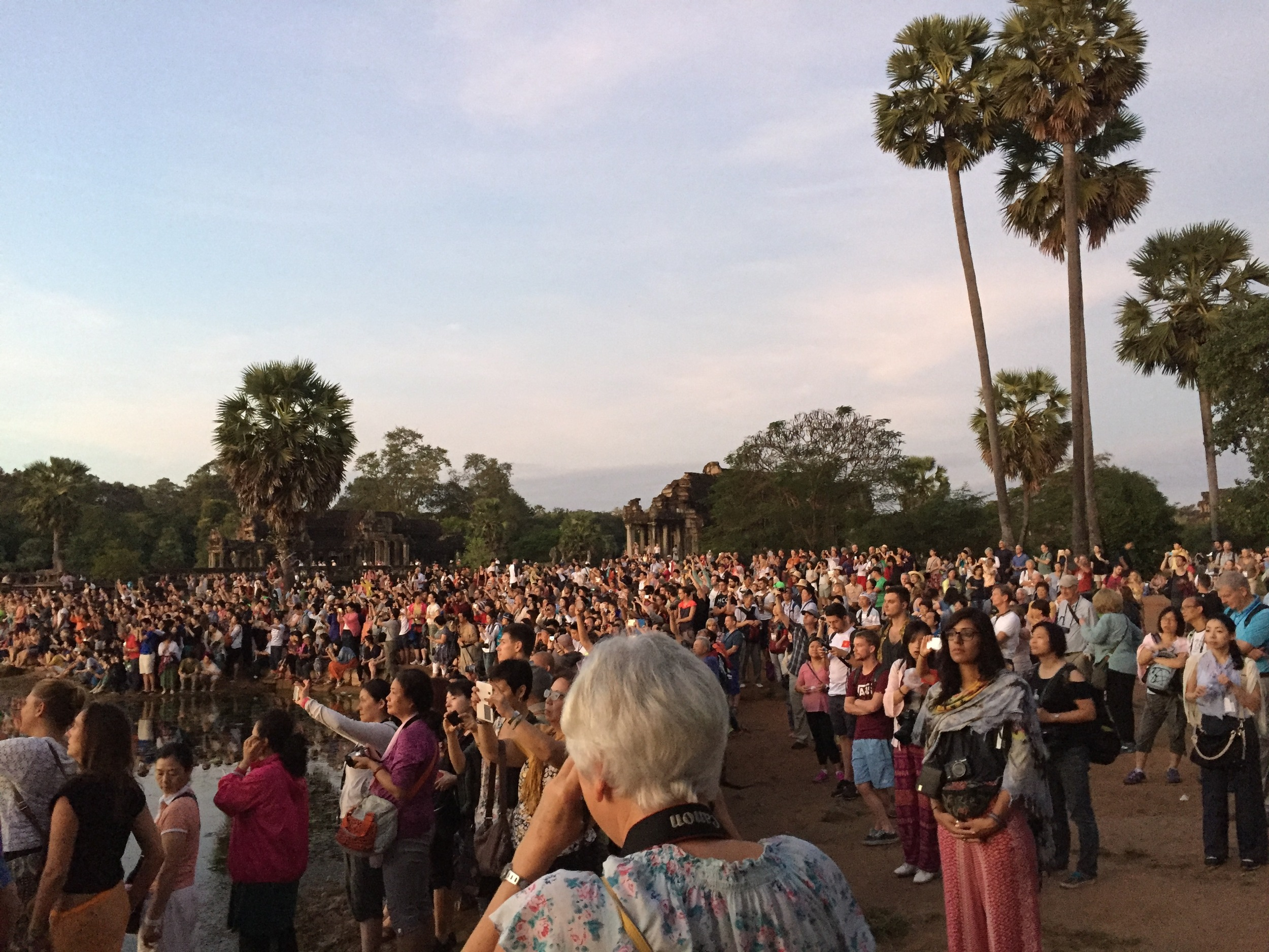 The crowds at Angkor Wat just before sunrise.