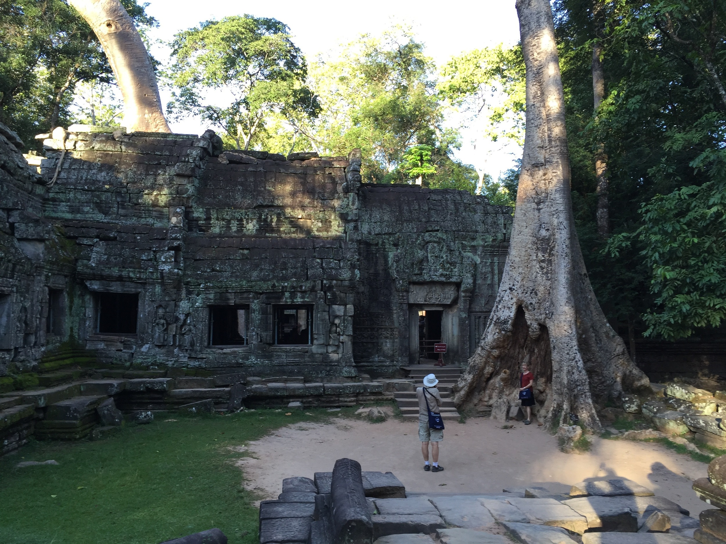 Entrance to Ta Prohm, which is being reclaimed by the jungle.