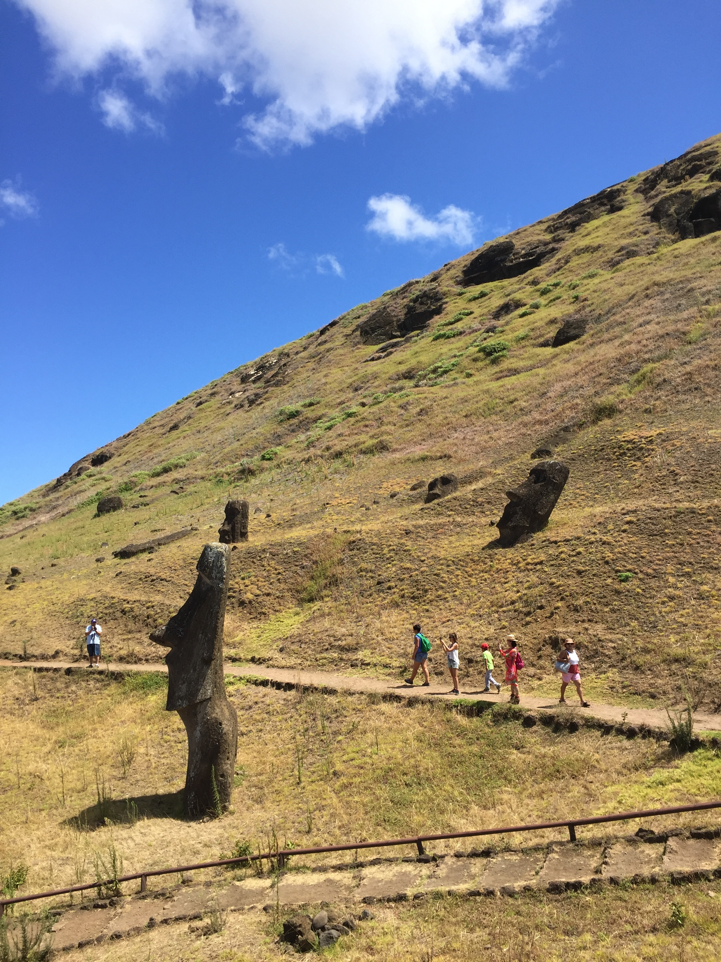 You can hike around the Moia scattered about the hillsides of Easter Island.