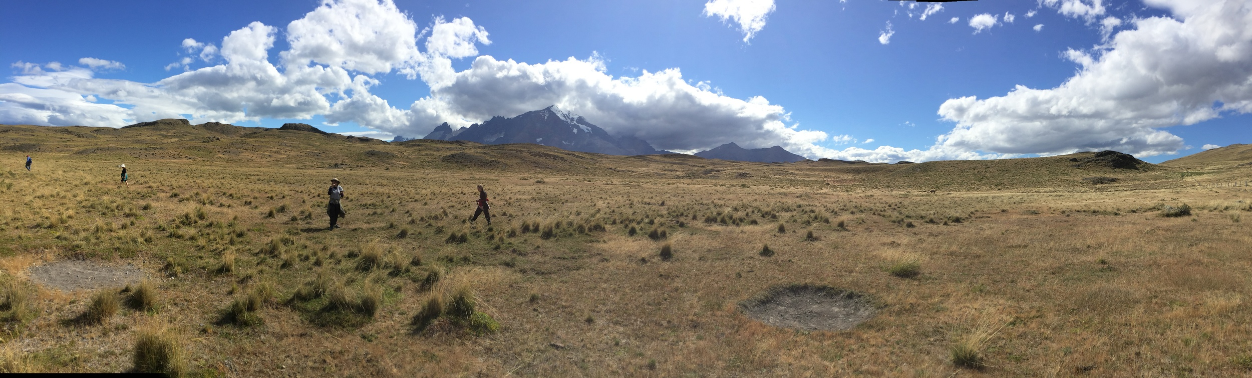 My fellow hikers in guanaco country in Torres del Paine National Park