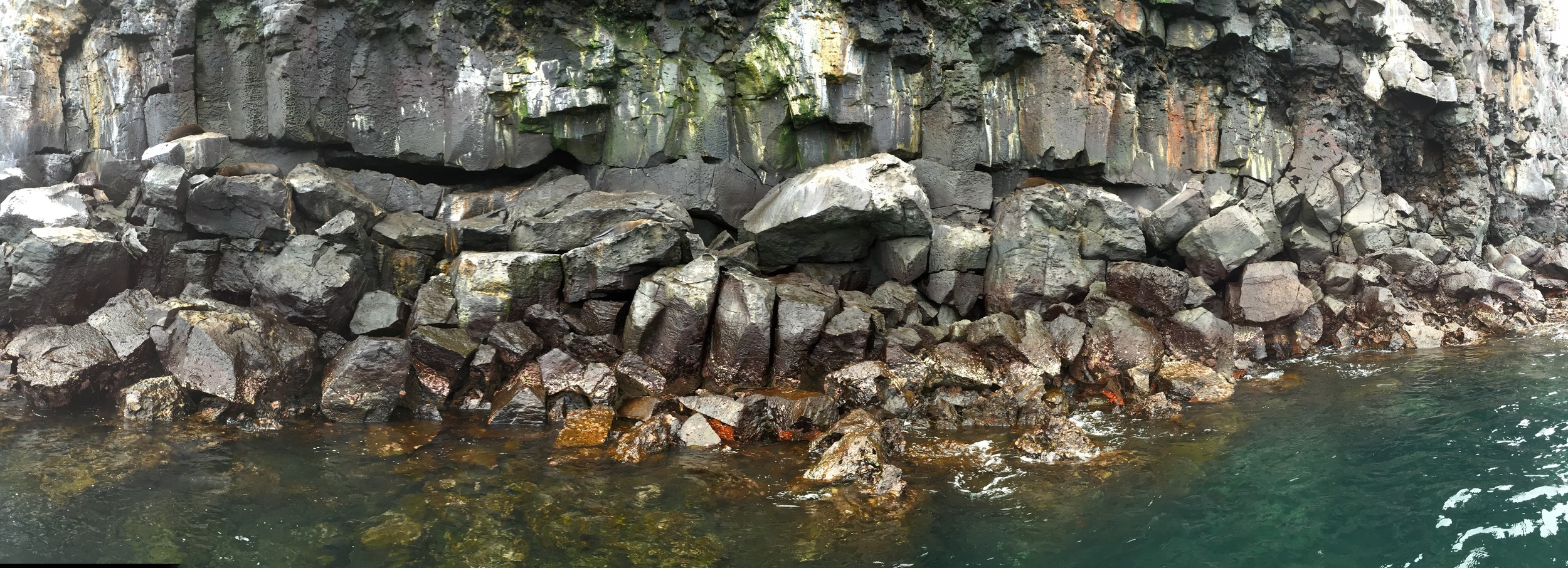 This rocky coastline at Isla Genovesa was a favorite hangout of fur seals, which made for fun underwater swim companions as we snorkeled here.