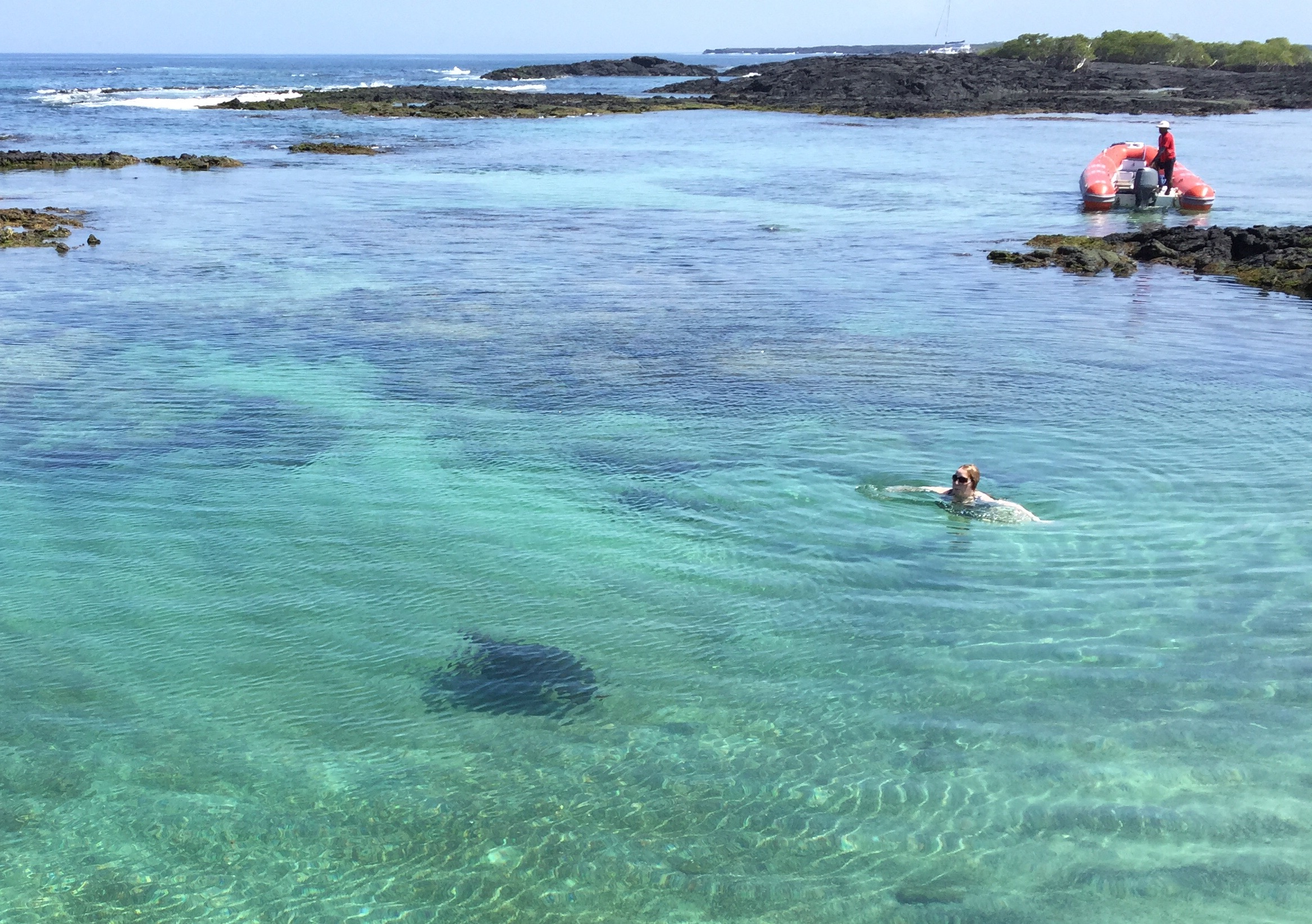 Swimming in a lagoon close to a Pacific green turtle, (darkish spot in the lower quarter of the photo.)