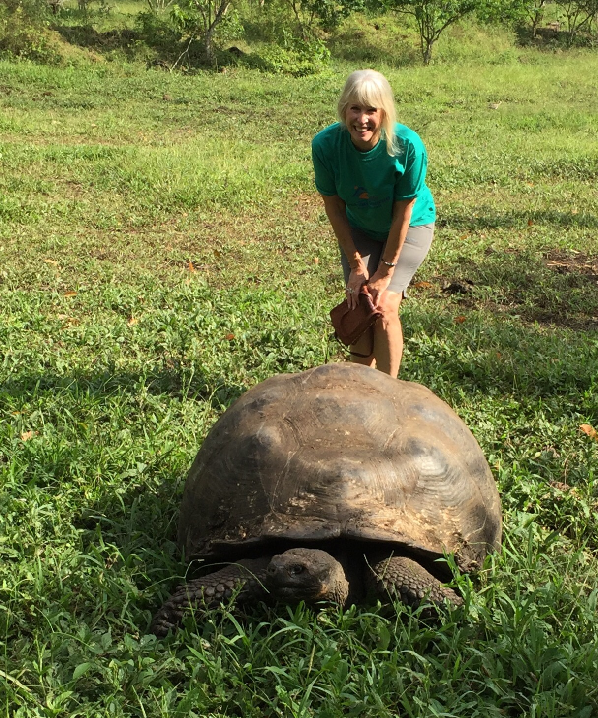 The giant Galapagos tortoise now, pictured in the wild with me above, has a chance of surviving since its native habitat is now mostly free of invasive goats. Non-native goats decimated native forests on several islands in the Galapagos.