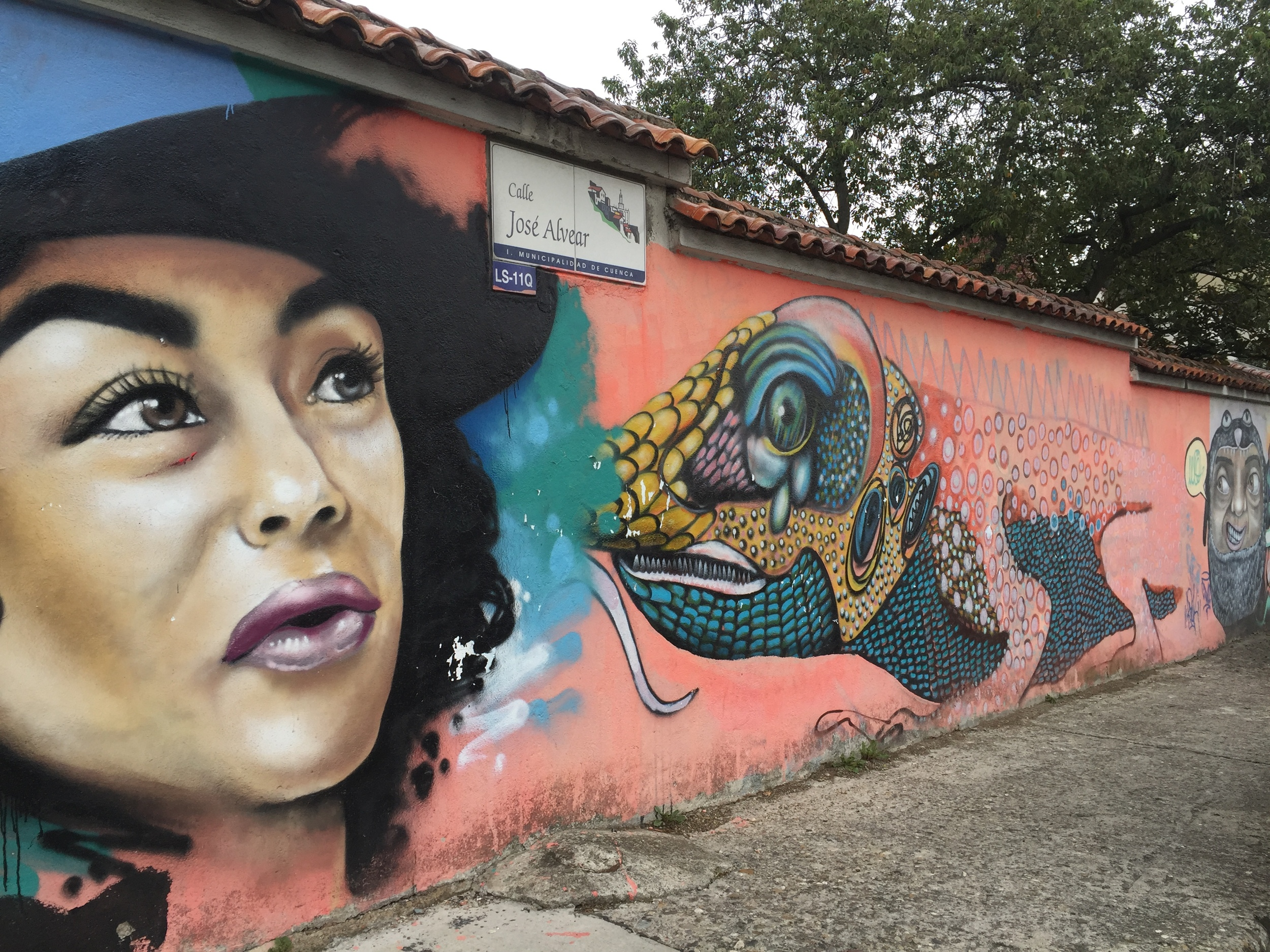 Cuenca streets have lots of colorful murals.