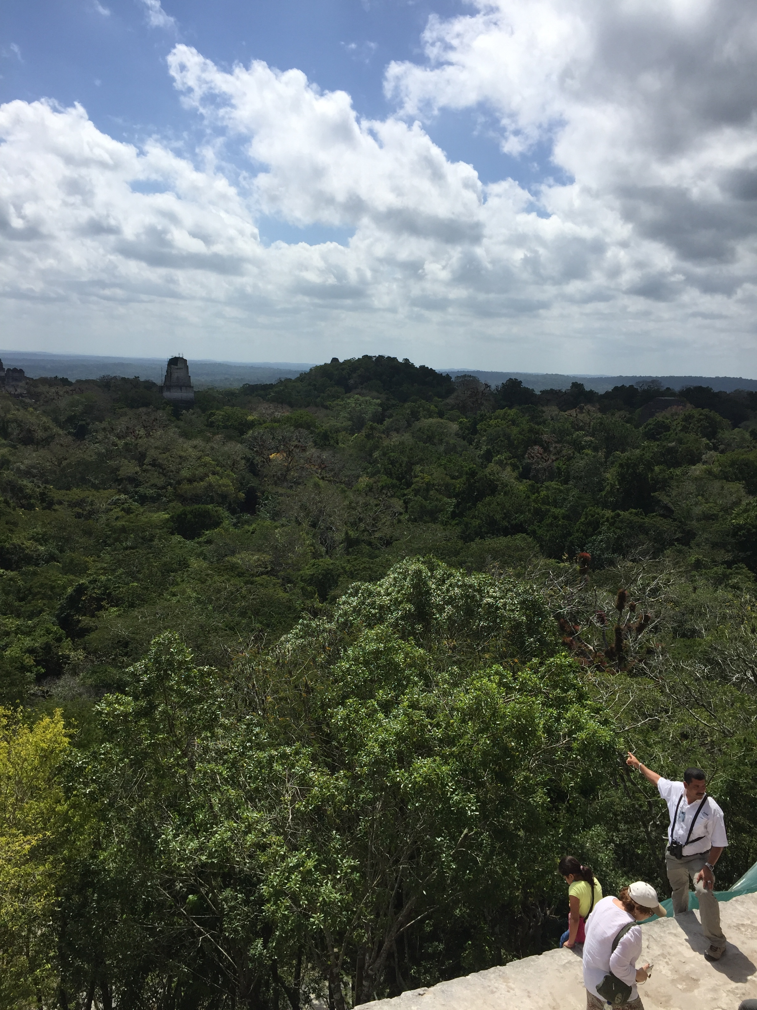 Near the entrance to Tikal National Park, our guide points across the jungle to the tallest ruin of Tikal,