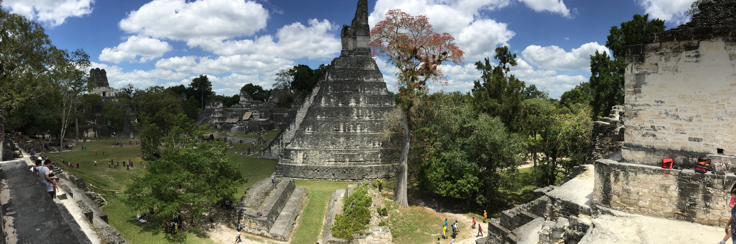 Panoramic view of the main plaza of Tikal.
