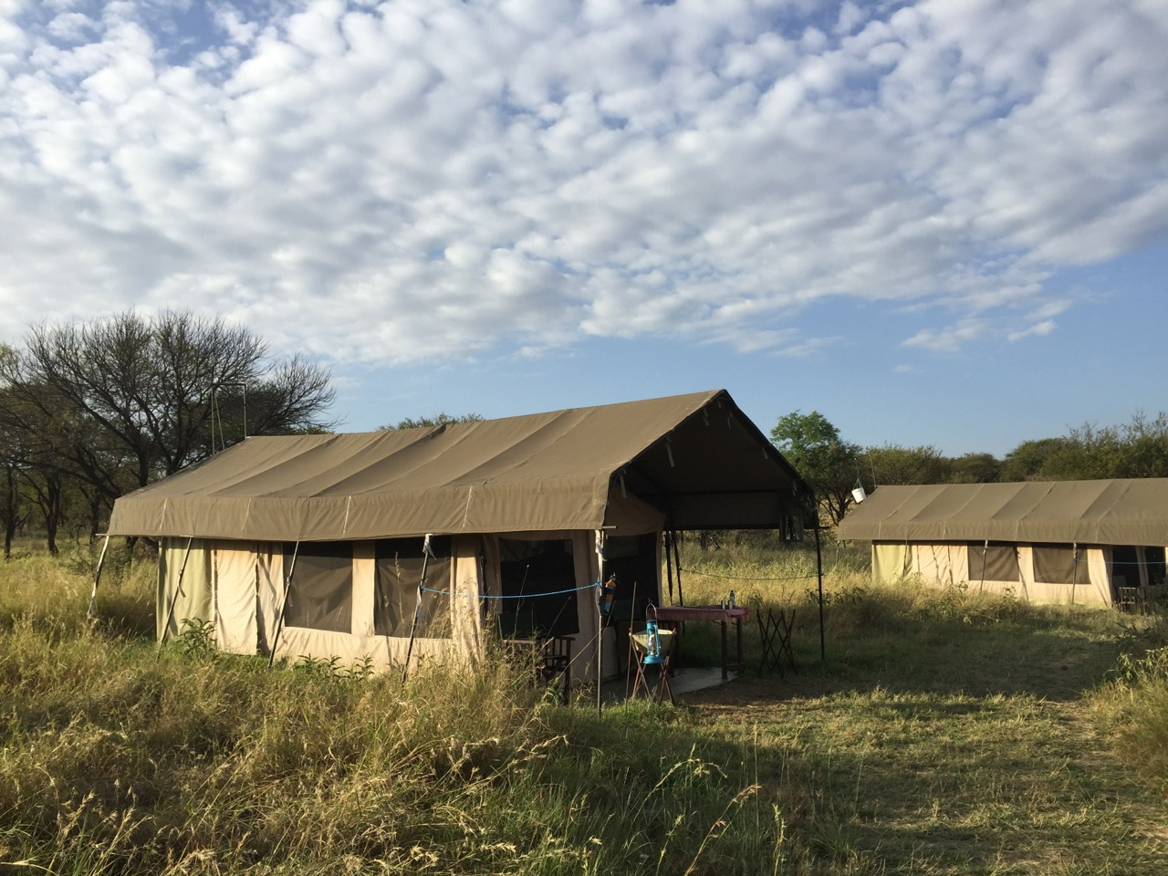 serengeti-tent-camp.jpg