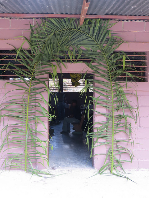 palm decorations