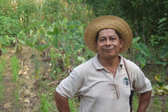 Mariano Navarro, a Sustainable Harvest International Field Trainer, has been working with the Reyes for several years now. - photo by Michele Christle