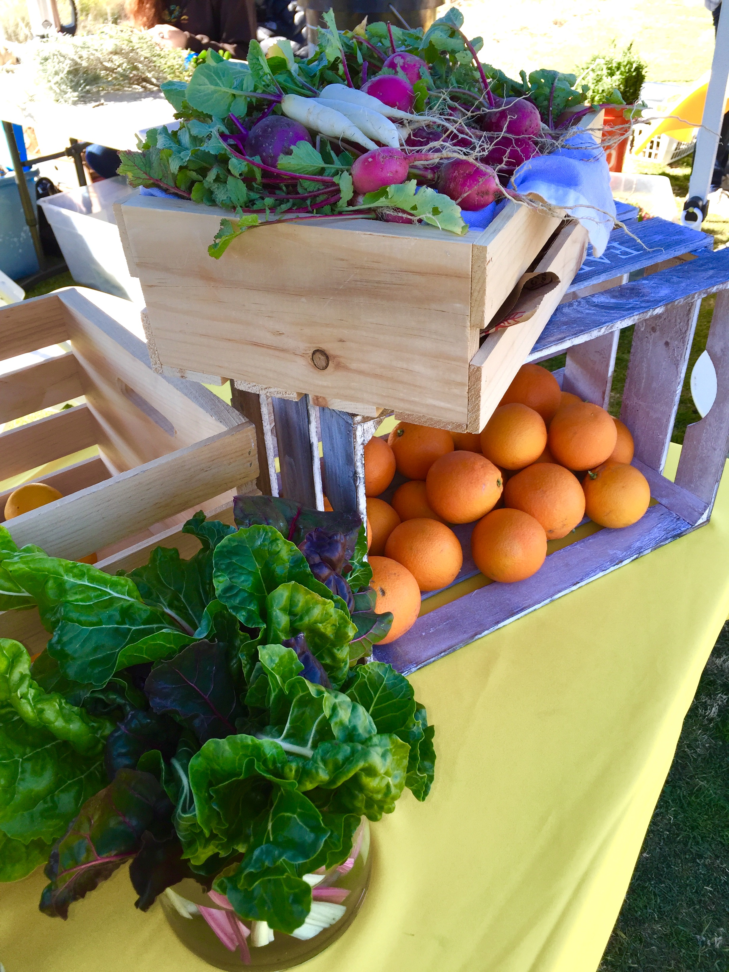 Fruits and vegetables grown by Oak Park students -photo courtesy of Kurt Weiss