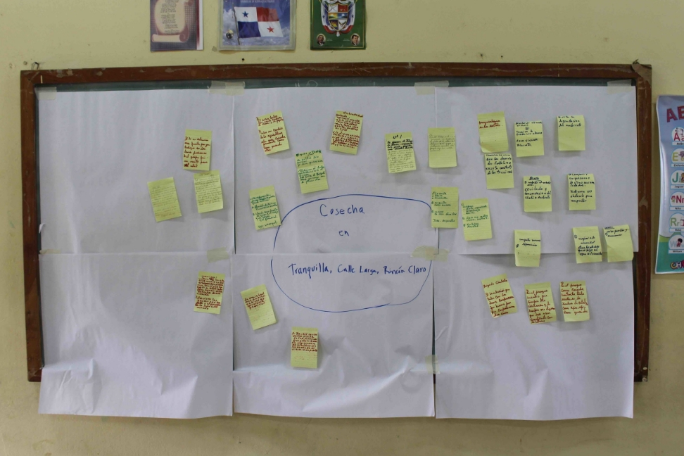 Mind mapping the effects of our agricultural extension program - photo by Bailey McWilliams