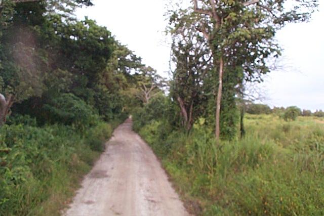 The road to Santa Rita