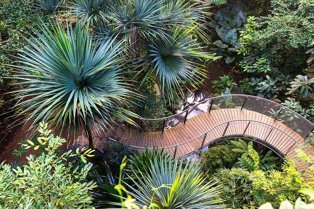 Masoala Rainforest at Zurich - p hoto by  Thomas Meier