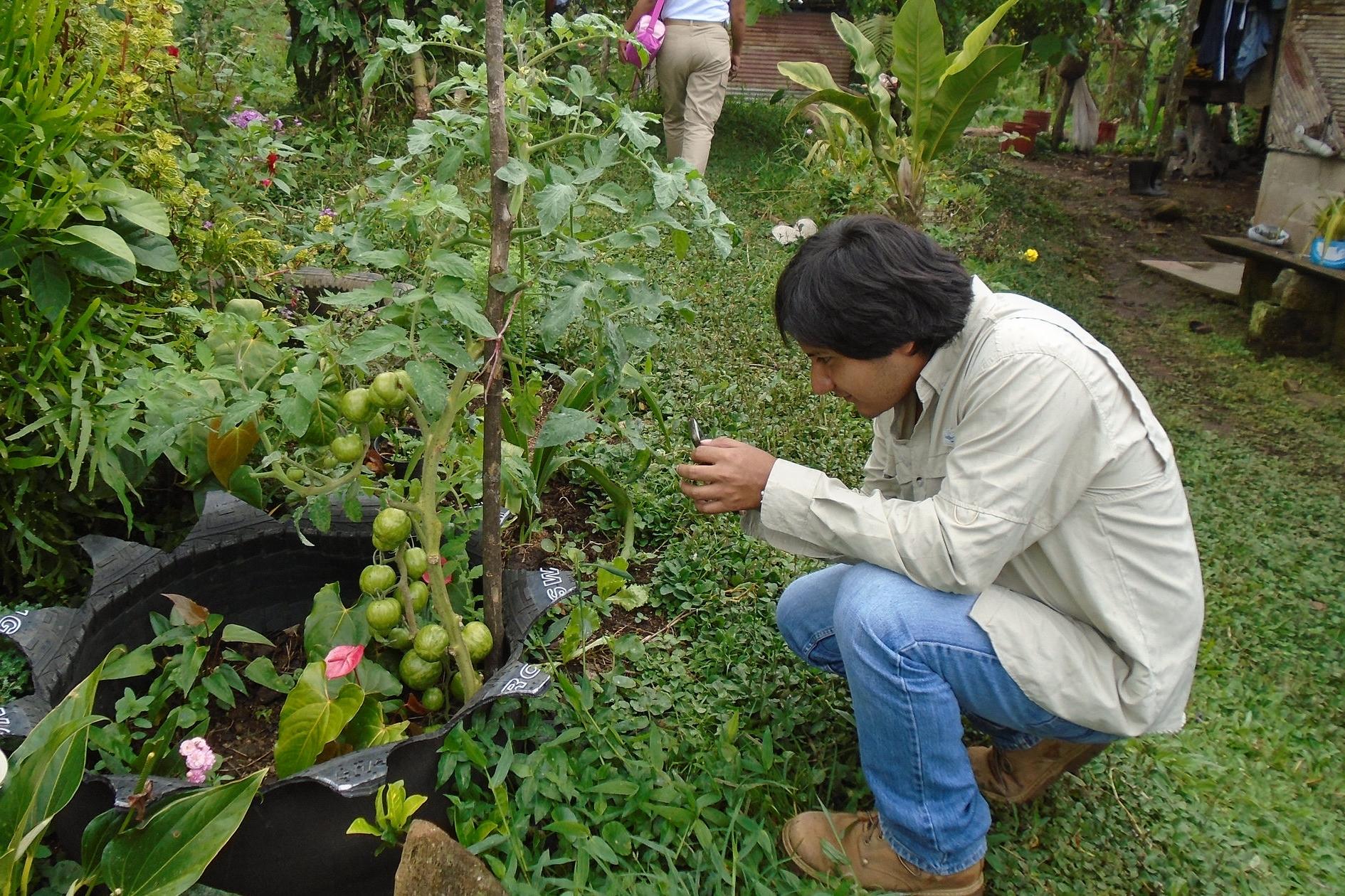 Abner inspecting a garden in Veraguas