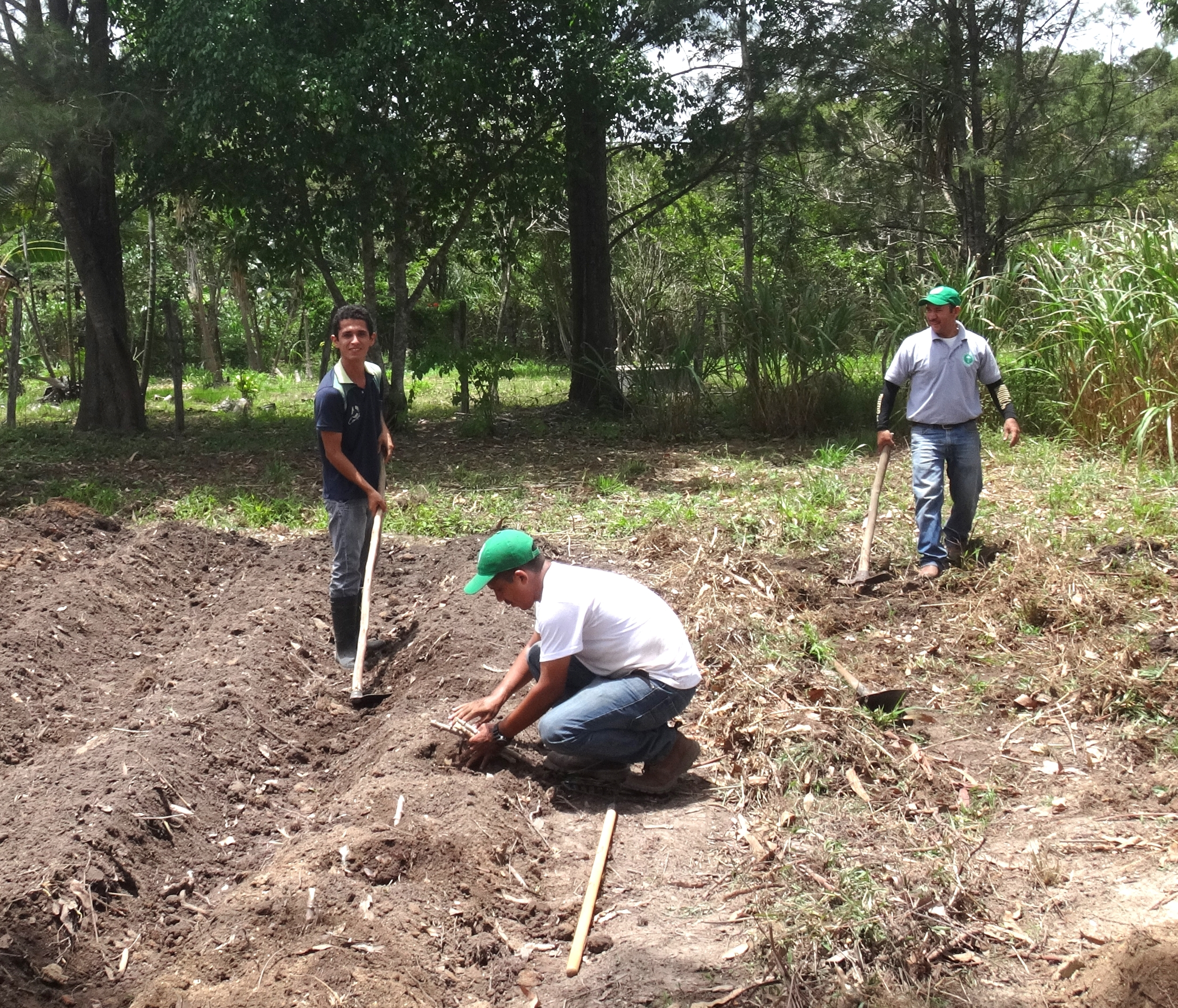 Heinert works with field trainers in Honduras to prepare a demonstration garden.