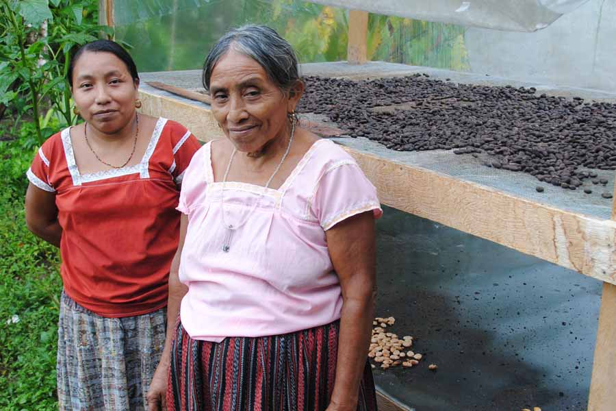 NEU students helped build solar dryers similar to the one Santa Putul and her mother dry cacao beans in. - Photo by Julian Pop