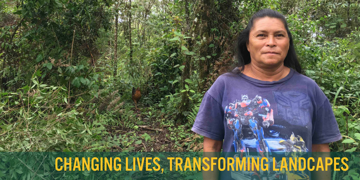 Rosa Perez stands in her preserve of tatascán trees in El Pito, Honduras. - photo by Elliott Powell