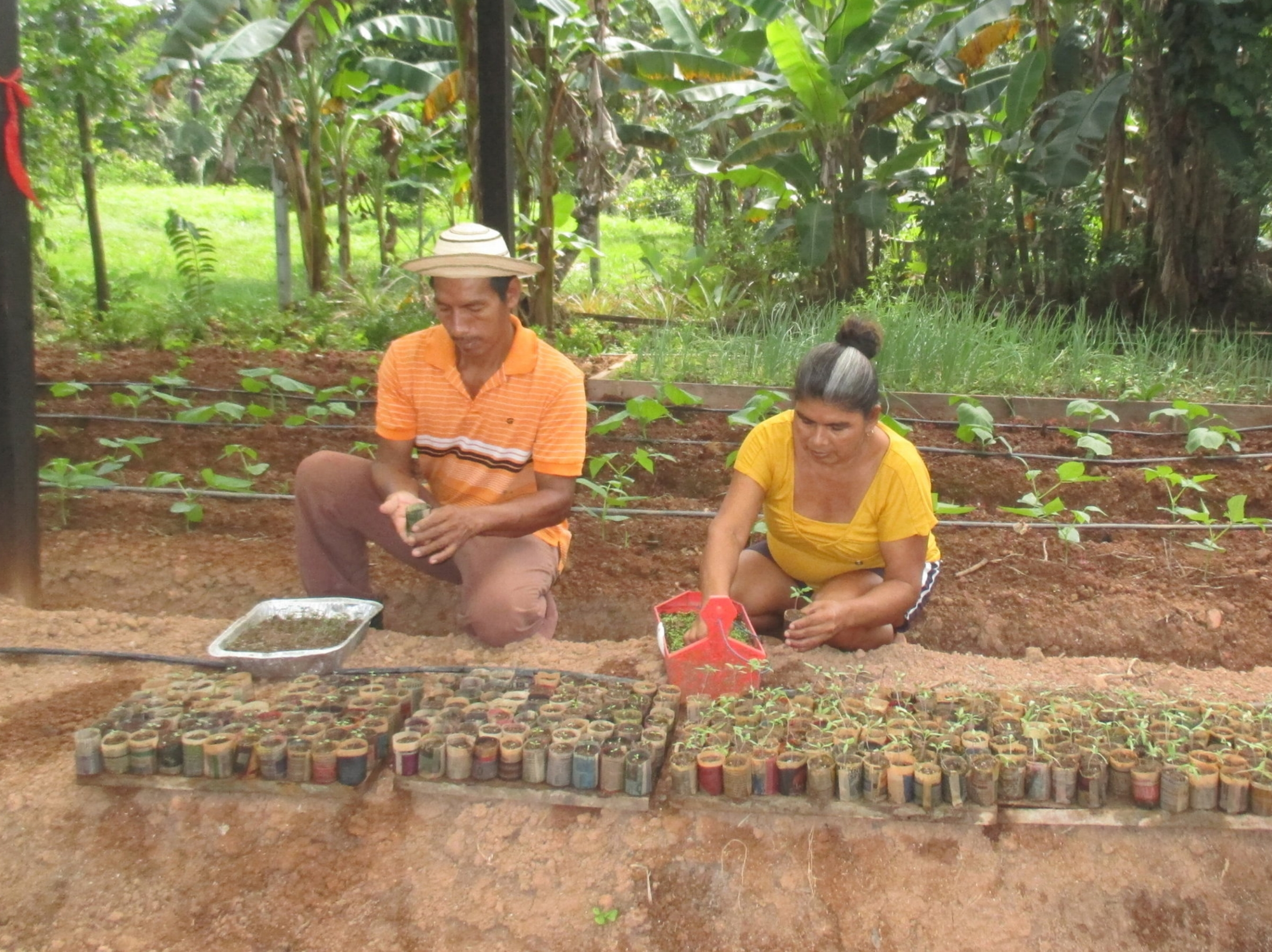 Rafael and Maria make biodegradable seed pots out of newspaper. - photo by   Daysbeth   López