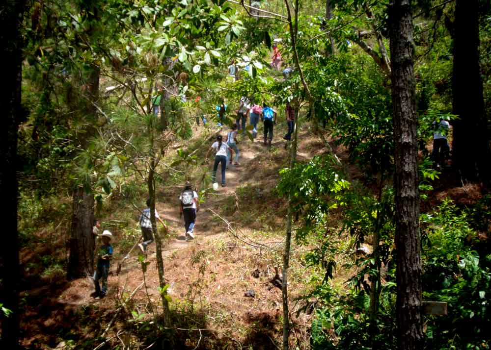 Students in La Laguna, Honduras planted 800 trees. - photo by Obed Gomez