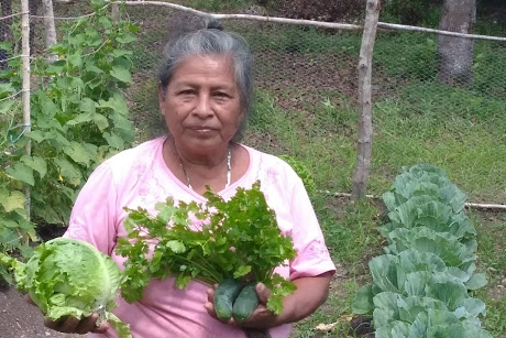 Josefa's regenerative, organic garden is already bursting with floral coriander, crunchy cucumbers, and crisp lettuce.