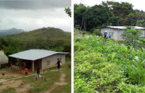 Image for Campaign Page_ Sustainable Harvest International_Panama land transformation.png