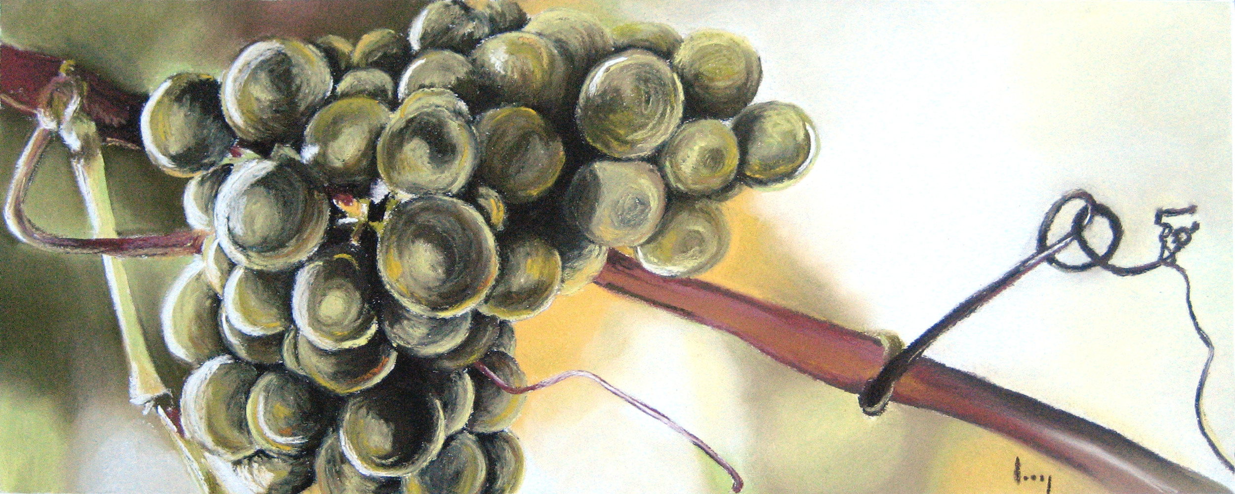 Green Grapes, 2007