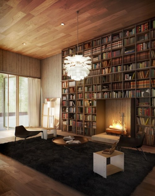 bookshelf_surrounding_fireplace.jpg