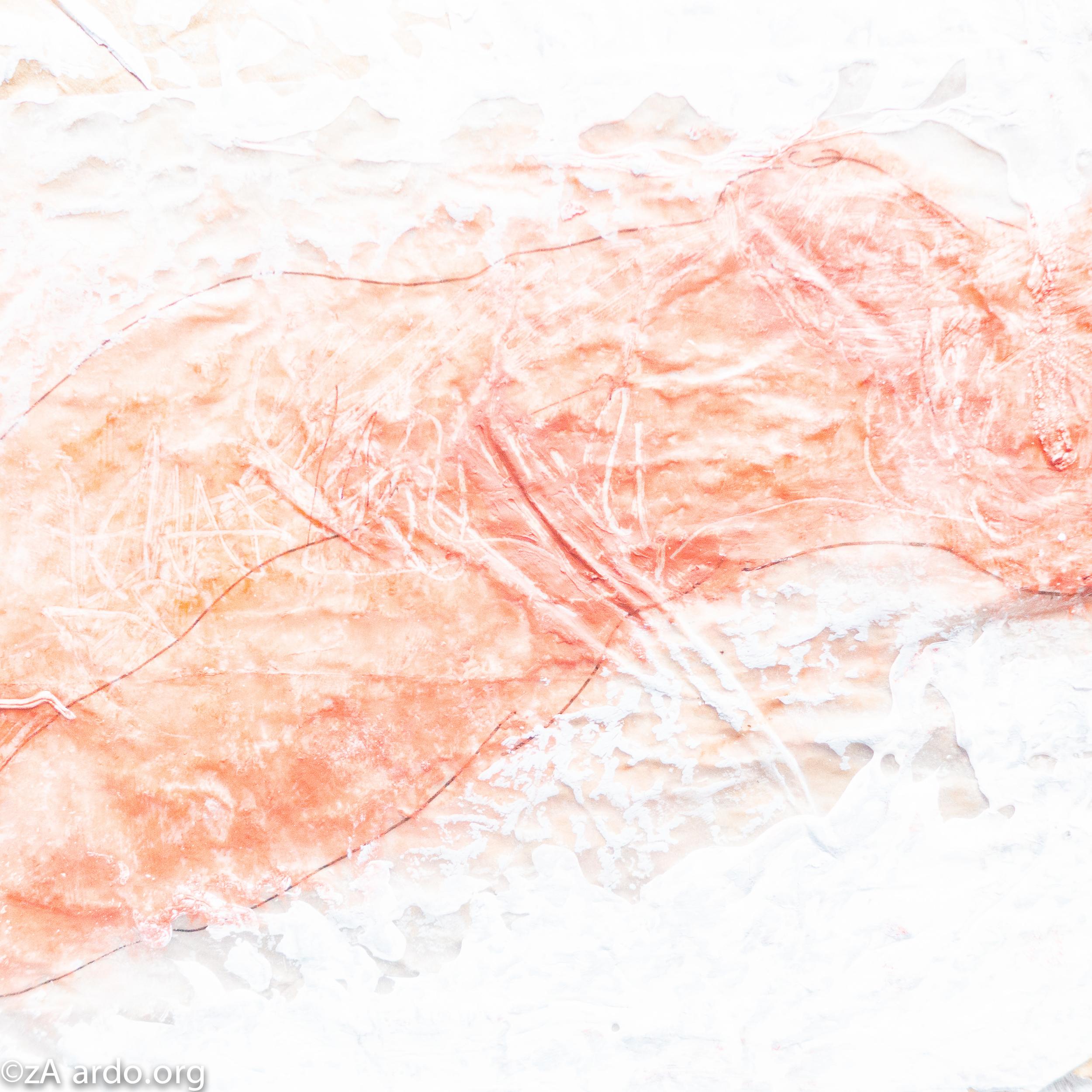 Nude Imprints©zARDO-9.jpg