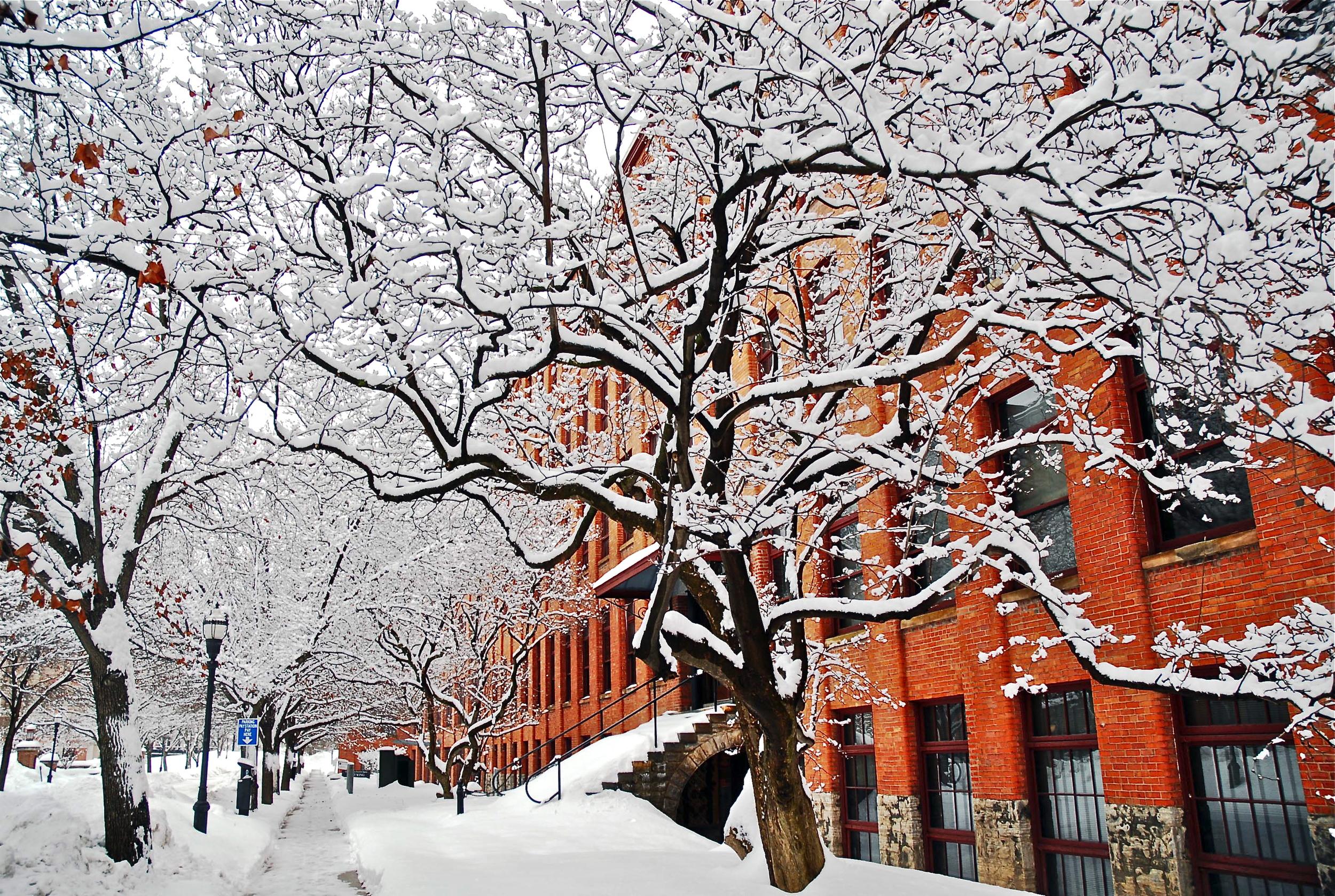 Plume Street, Syracuse, NY by Ray Trudell.