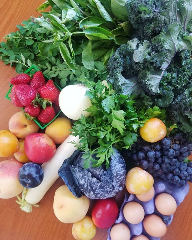 The produce at the farmer's markets here in Long Beach has been nothing short of orgasmic. Yep 👏🏼 #plums #peaches and #greens #omg ! And these local eggs that I just soft-boiled for 7 minutes.. a dream❤ I also scored fresh #moringa leaves, Thai basil, daikon radish, beautiful cabbage, and quintessential grapes 🍇 all for $20 which I am still shocked about, coming from the crazy high prices on Maui! . . . . . . #farmersmarket #longbeach #fresh #produce #supportlocal #eggs #green #dtlb #eatmoreveg #privatechef #nutritionist #bounty #strawberries #fruit #veganeats #kale #herbs #herb #salads #fullfridge #cabbage #rawdiet #eattherainbow #inmykitchen #nourish