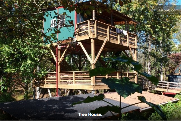 Treehouse-DaylightExterior.jpg
