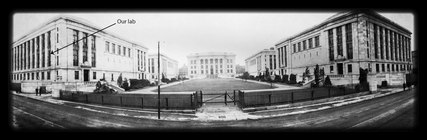 Harvard Medical School , ca 1920.   Click on the picture for map.