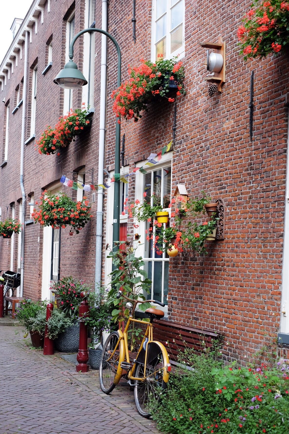 Delft Bike Flowers