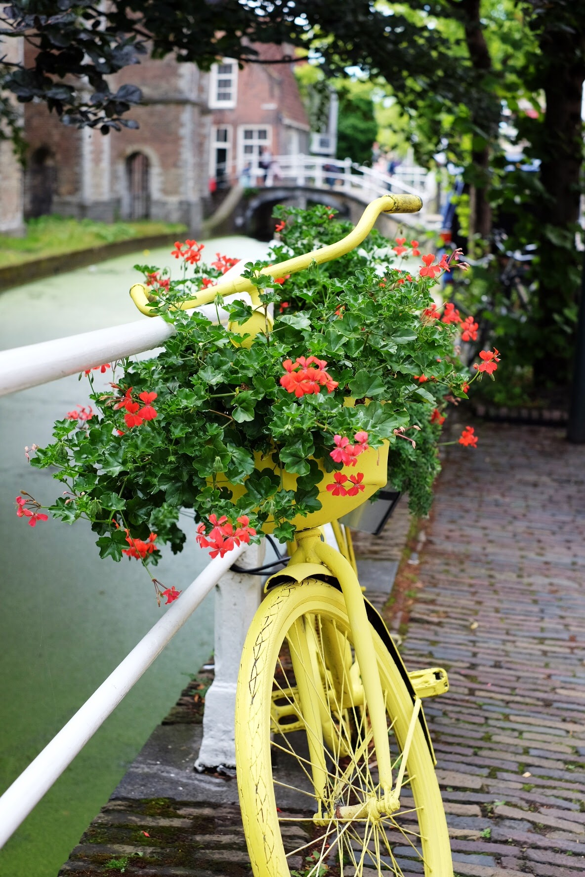 Flower Bike Delft