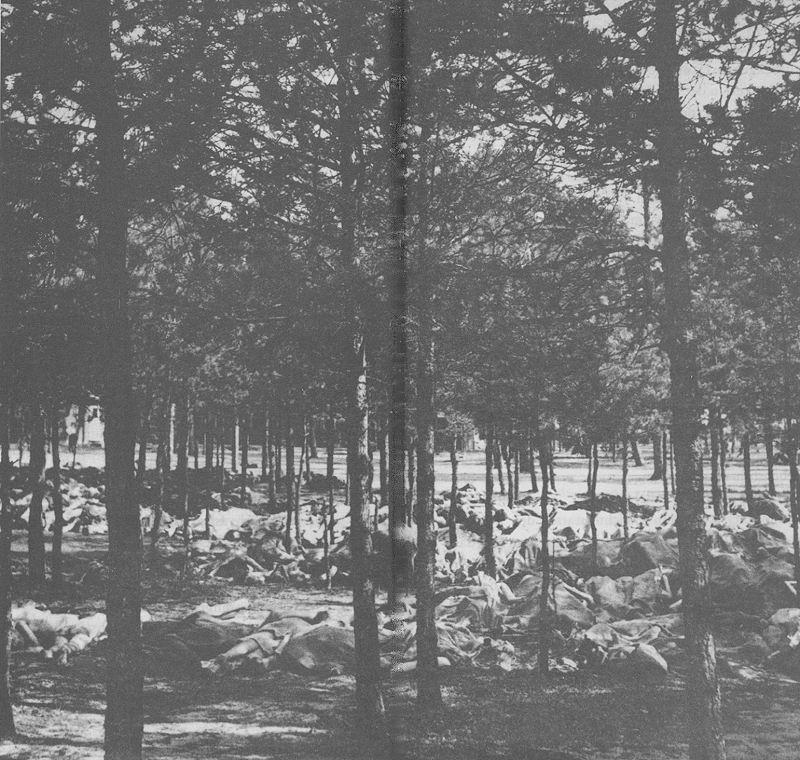 Sebald's Bergen Belsen photograph.