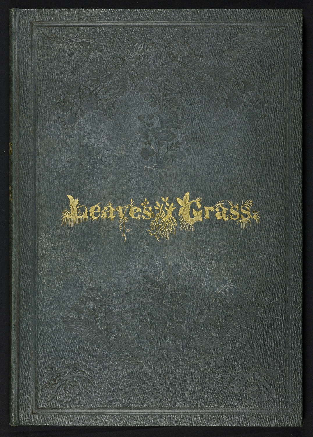 Cover of the First Edition.