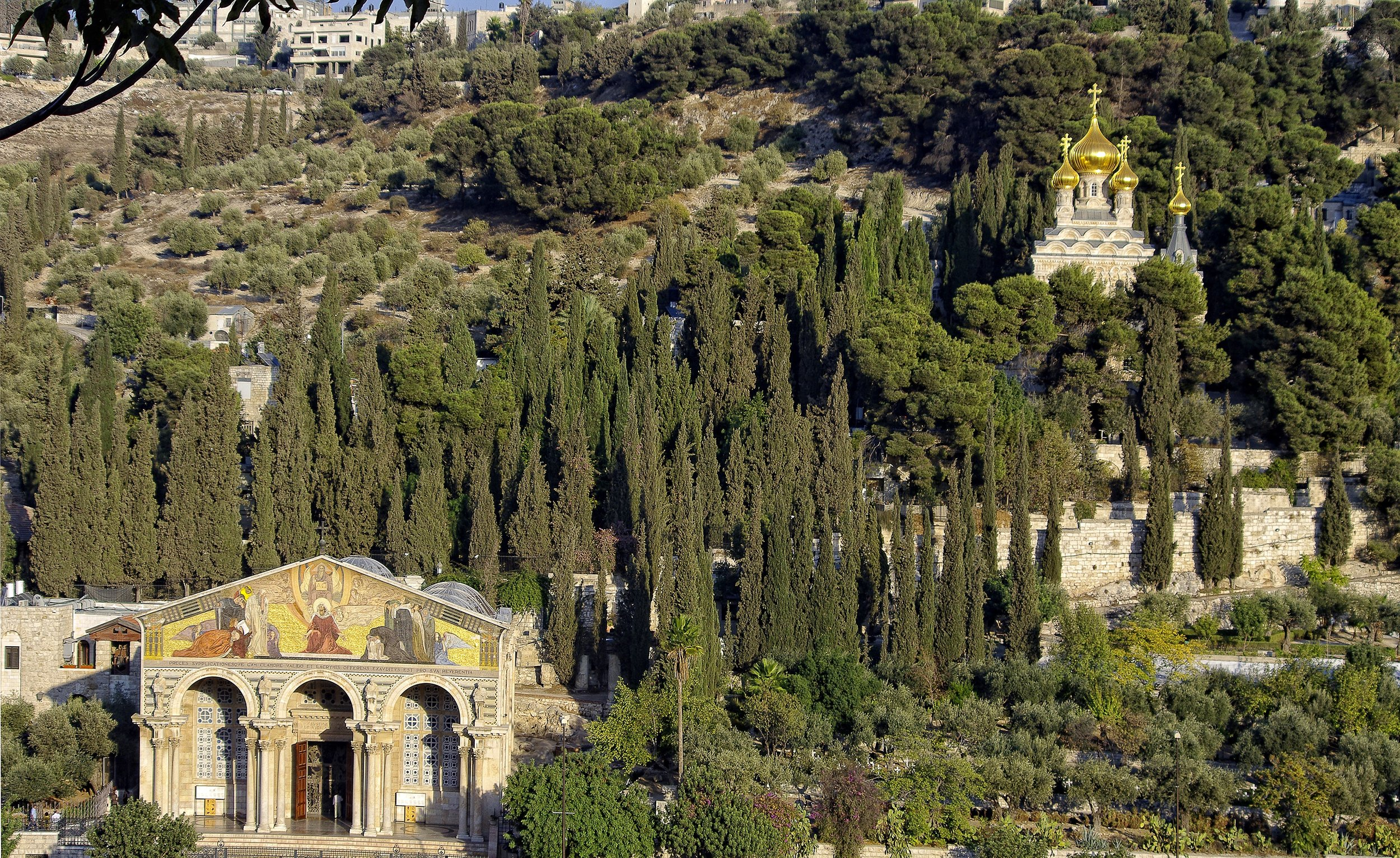 The mount of olives, Jerusalem.