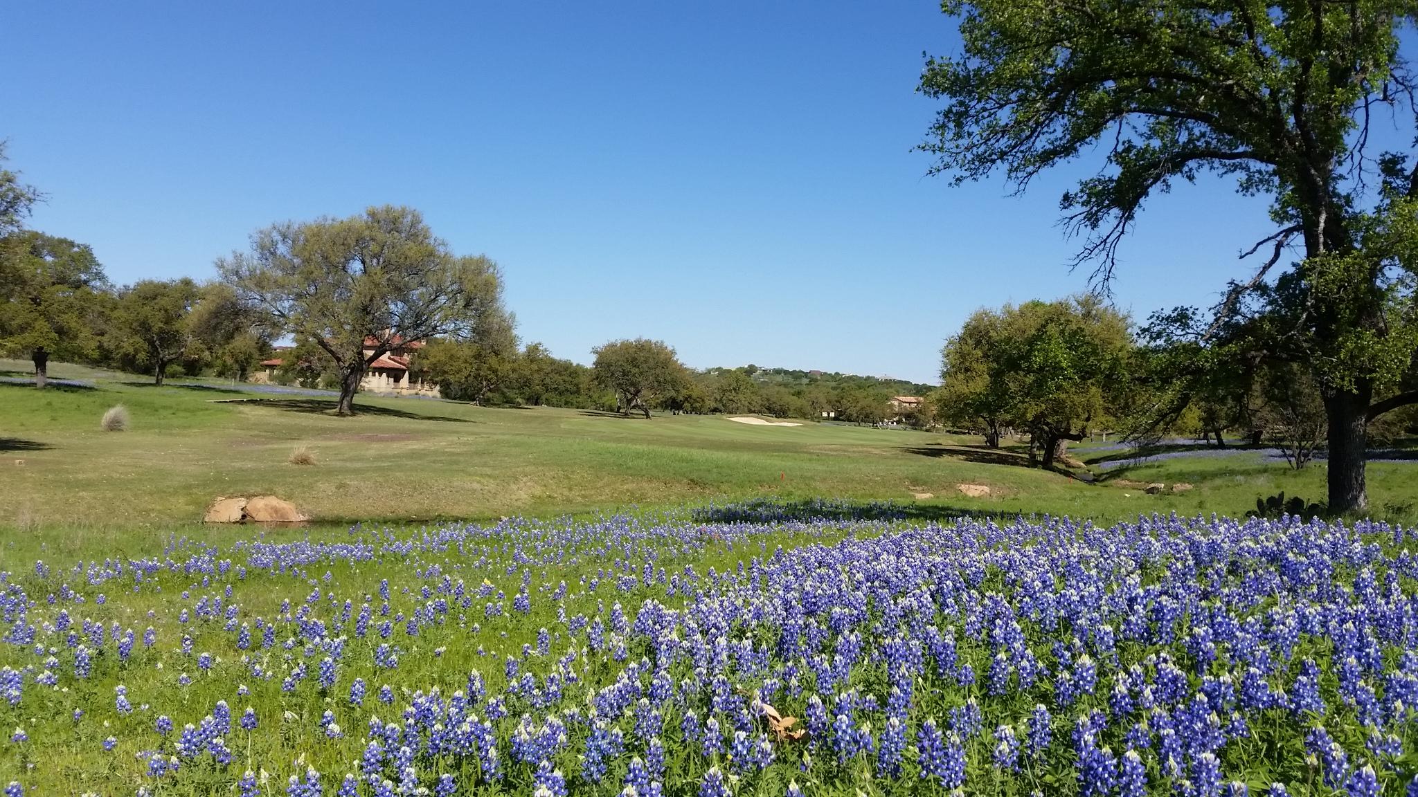 Rural Texas.