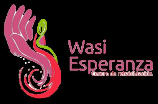 WASI Logo.png