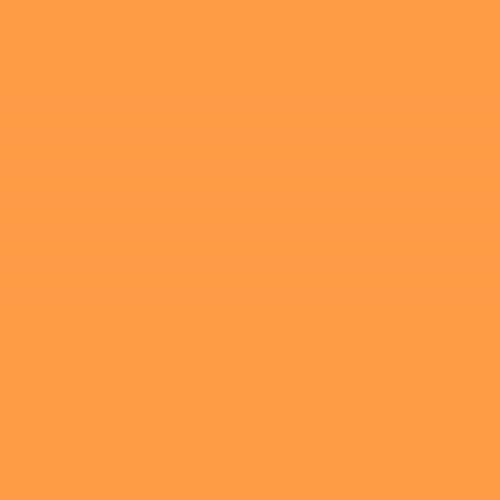 Orange (PMS 804)
