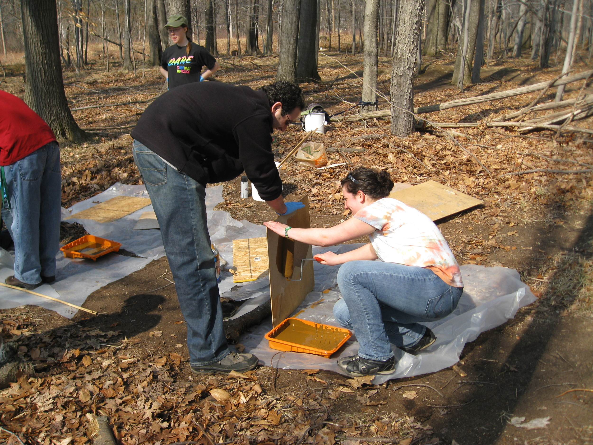 Preparing shelter boards for reptile/amphibian survey
