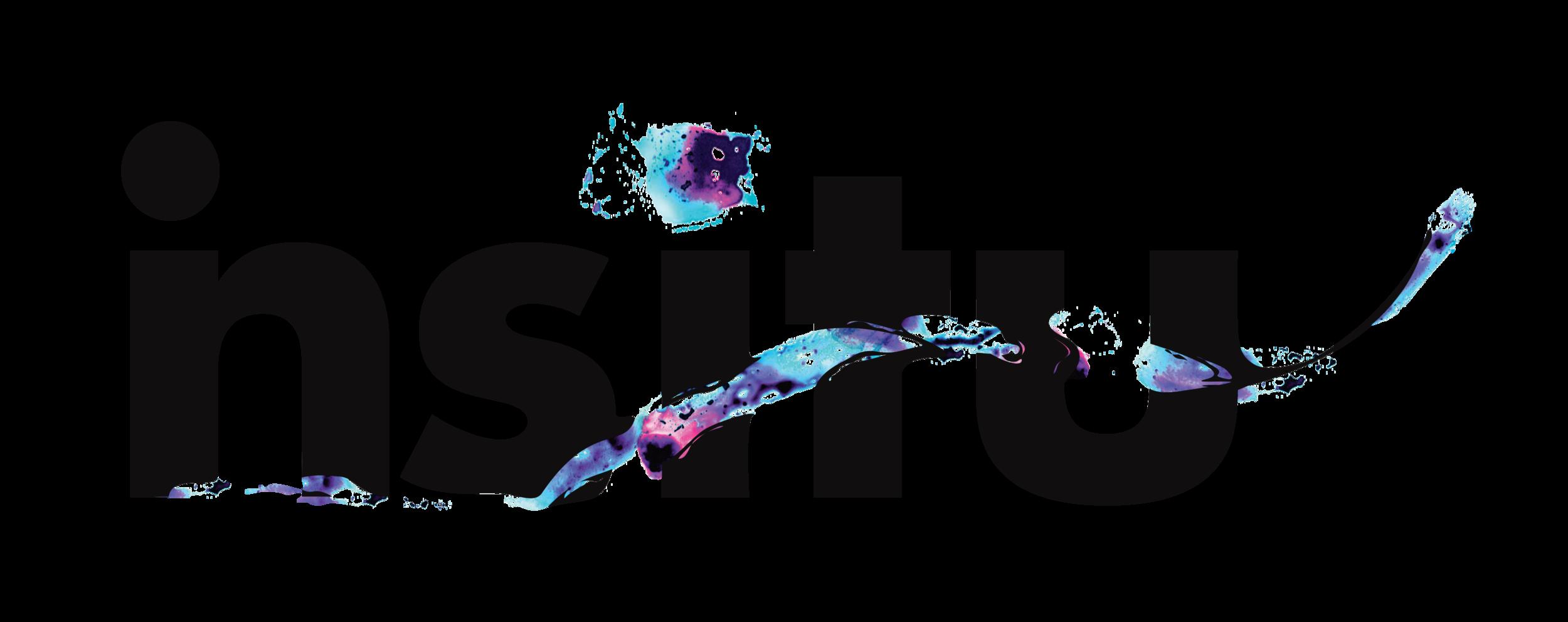 el local_insitu logo