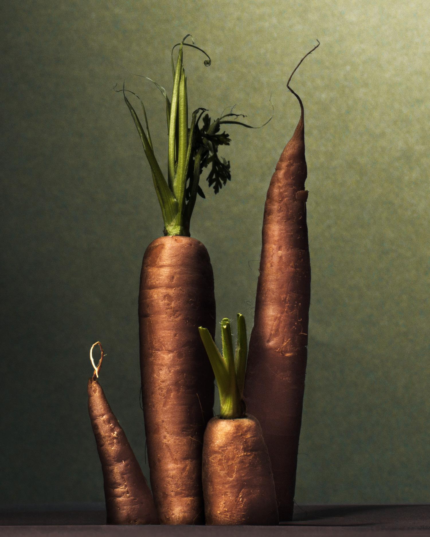 carrots-matthew-kashtan-photography.jpg