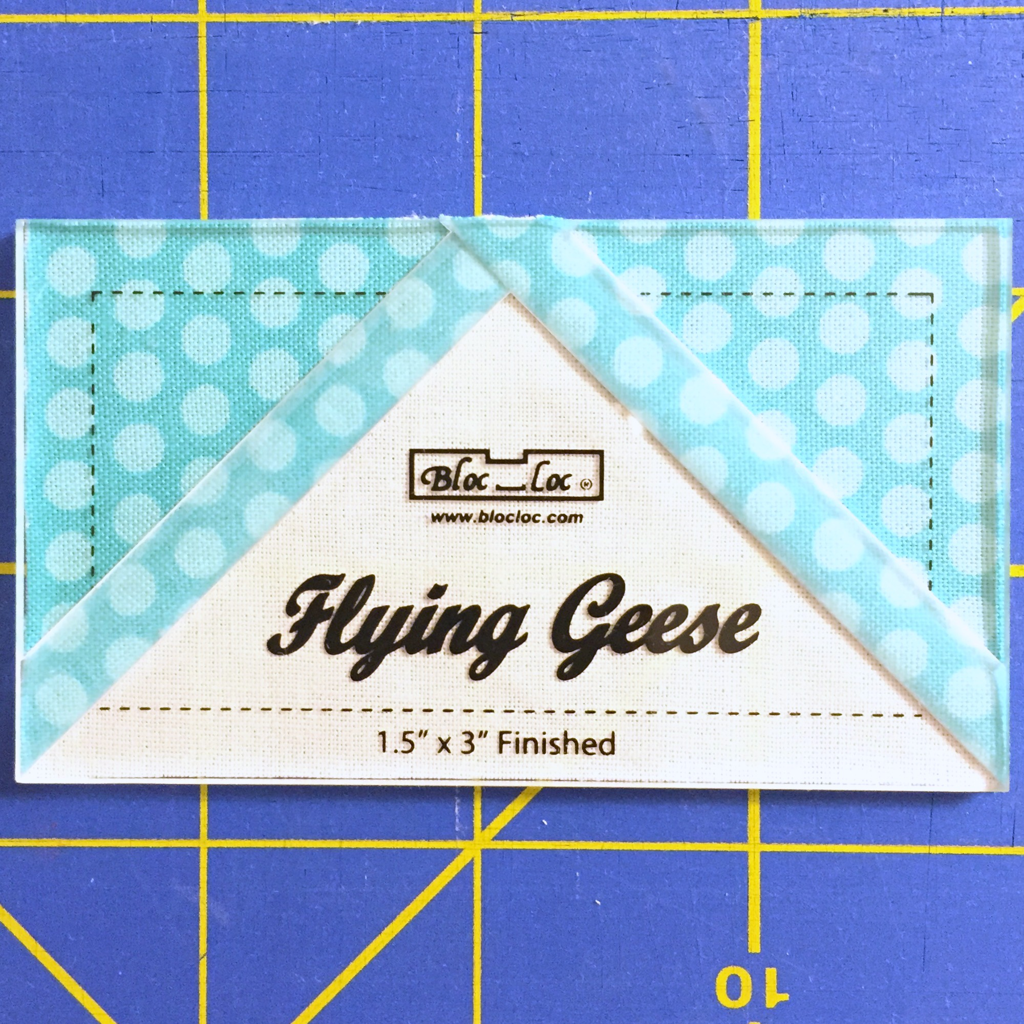 Flying Goose Trimmed with the Bloc Loc Ruler