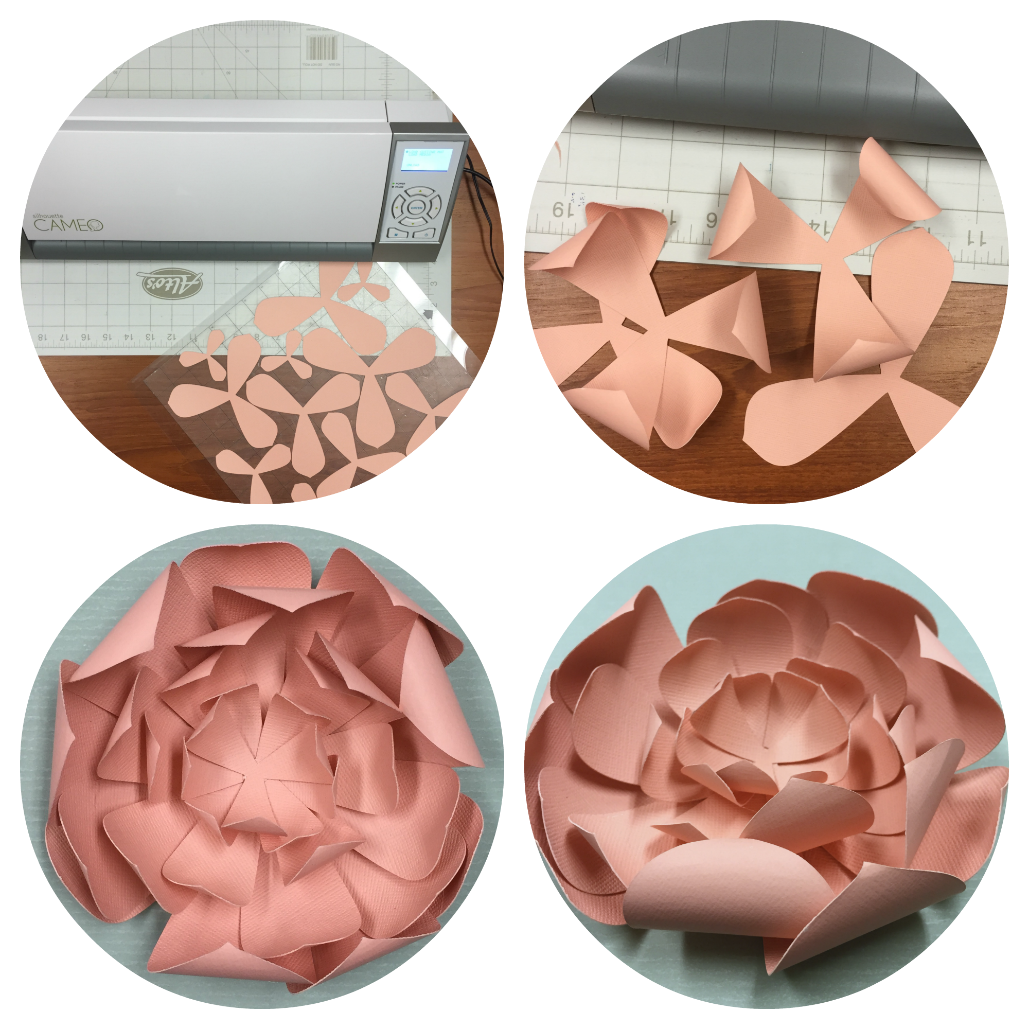 Making a flower on the Silhouette Cameo Cutter.