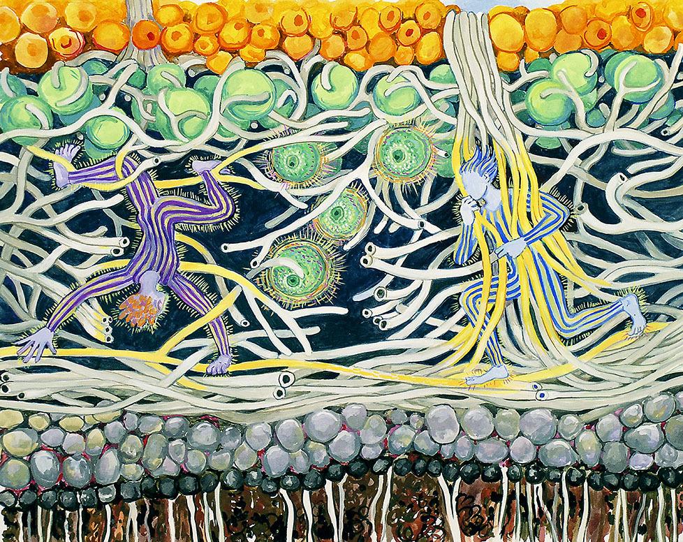 Humans Explore a Lichen