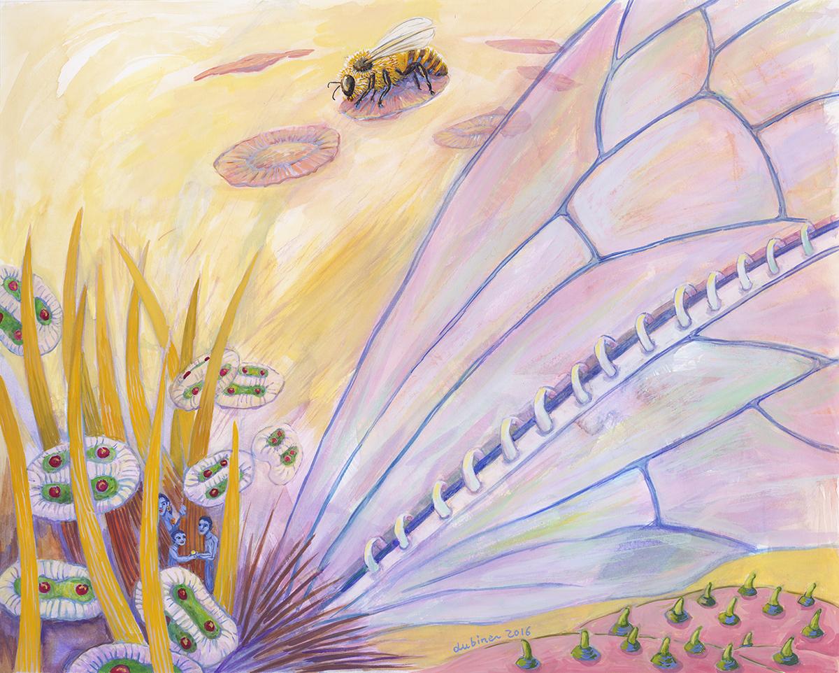 Bee's Wings
