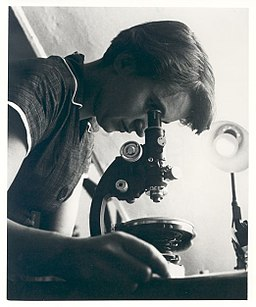 Rosalind Franklin was a chemist best known for her work on the X-ray diffraction images of DNA while at Kings College London, which led to the discovery of the DNA double helix. (photo: personal collection of Jenifer Glynn)